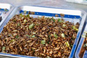 Insecten eten