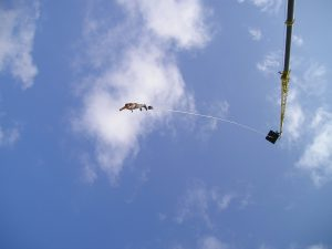 Bungee-fitness